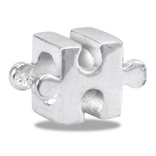 Puzzle Piece Bead - TRUNK SALE - No Further Discounts