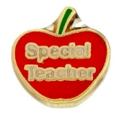 Special Teacher Charm For Lockets