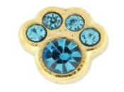 12- December Paw (Aqua Crystal) Charm For Lockets