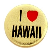 I LOVE HAWAII Charm TRUNK SALE, NO FURTHER DISCOUNT