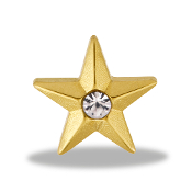 Gold Star Charm by Forever In My Heart® Lockets